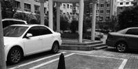 欧风花园小区 有居民私占公共停车位 - 新浪吉林