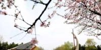 11月13日长春净月潭国家森林公园免费开放一天 - News.365Jilin.Com