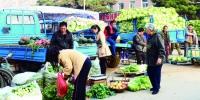 长春市民在绿园区铁西街秋菜销售点购买秋菜 - 新浪吉林