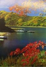 松花湖红叶 - 新浪吉林