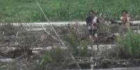 汪清两村民救牛被困河中 消防员架近百米索道救援 - 新浪吉林