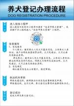 延吉市犬只登记系统于4月8日正式启用 - 新浪吉林