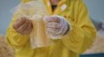 图为鲜食玉米装袋环节。新华社记者徐子恒摄 - 新浪吉林